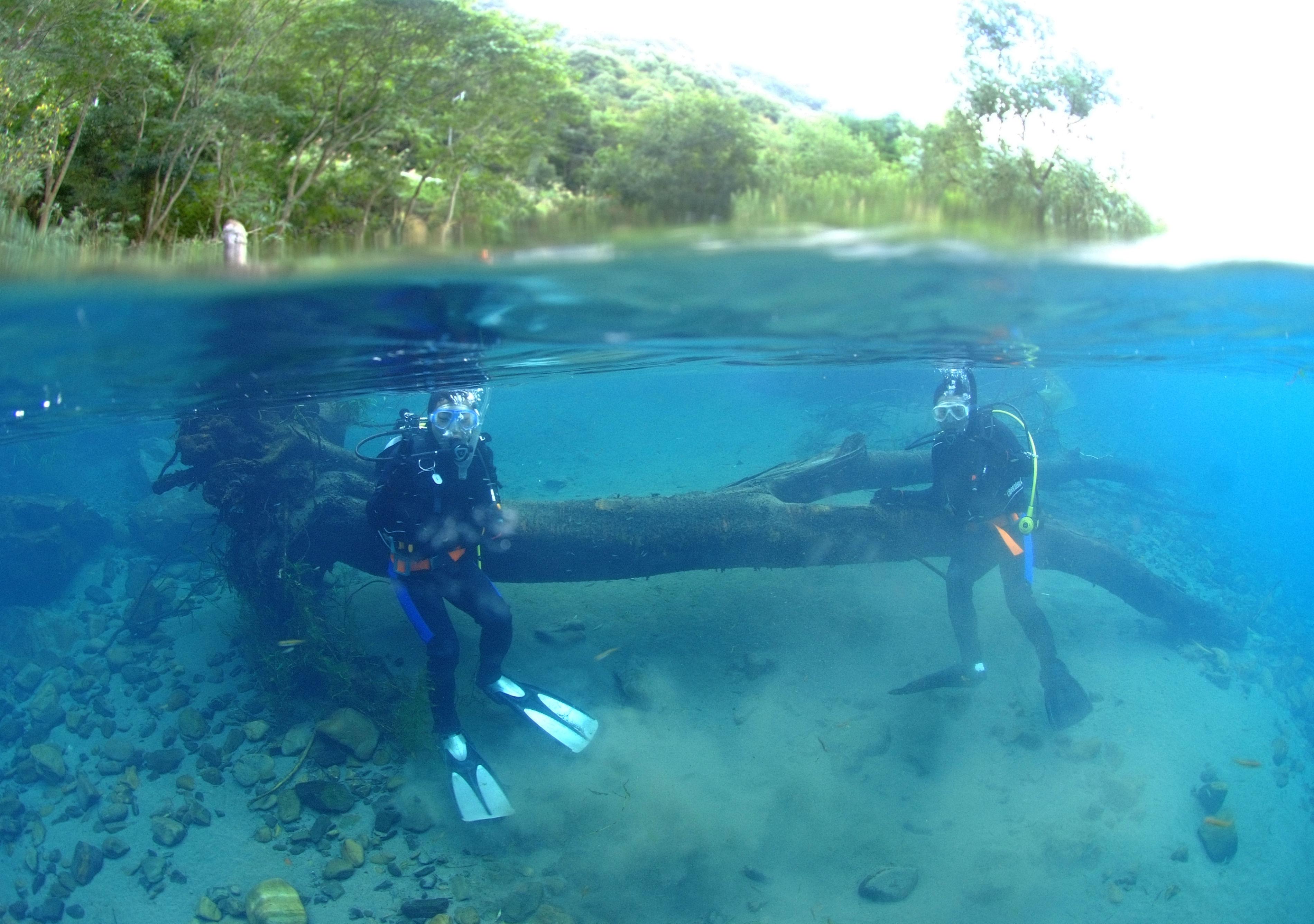 淡水ダイビング